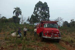 Yerba Mate: detectan tareferos en negro en Aristóbulo del Valle
