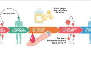 Científica argentina lidera grupo internacional de trabajo contra el COVID-19