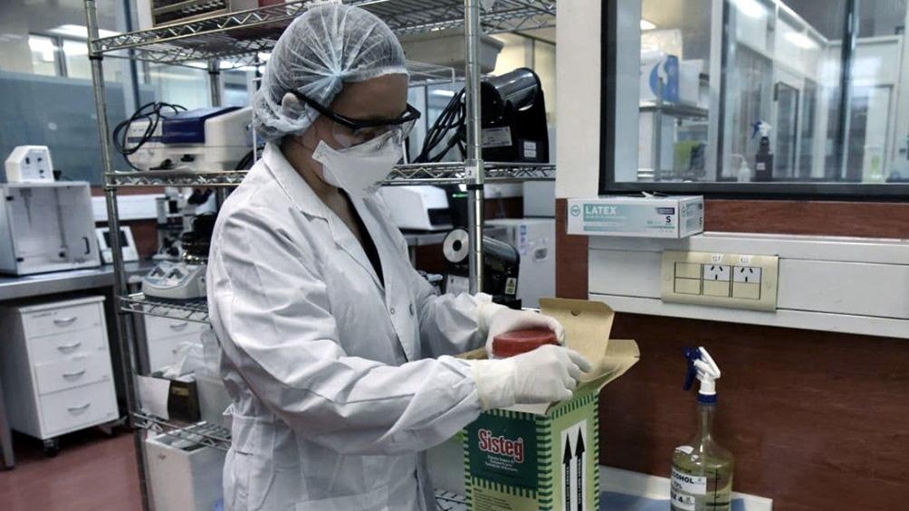 Misiones podría sumar un segundo laboratorio al sector público para detección de coronavirus