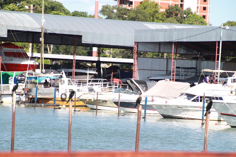 Presentan protocolo para navegar en embarcaciones a motor en Misiones