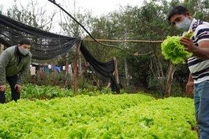 Agricultores destacan acompañamiento del IFAI para cultivar y vender sus productos en Posadas