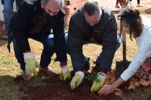 Reforestación: Plantaron árboles nativos en plazas posadeñas