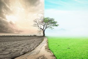 La próxima fase de la crisis: Se necesitan nuevas medidas para una recuperación resiliente