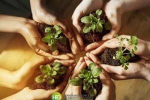 Posadas: incorporan la comisión permanente de Medio Ambiente en el Concejo