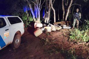 Prefectura secuestró más de 770 kilos de marihuana en Puerto Libertad
