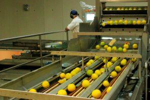 El Gobierno misionero busca mejorar el perfil exportador de las empresas alimenticias