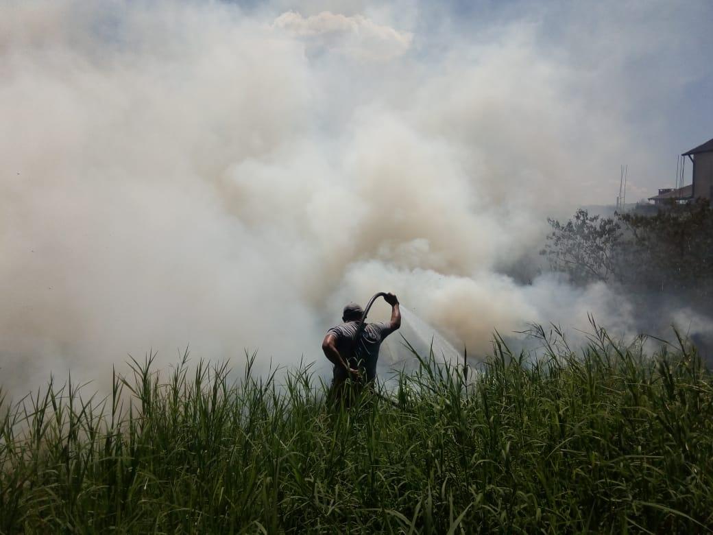 Clave: se aprobó ley que busca evitar prácticas especulativas en terrenos incendiados