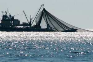 Argentina aplicará multas de hasta 150 millones de pesos por pesca ilegal