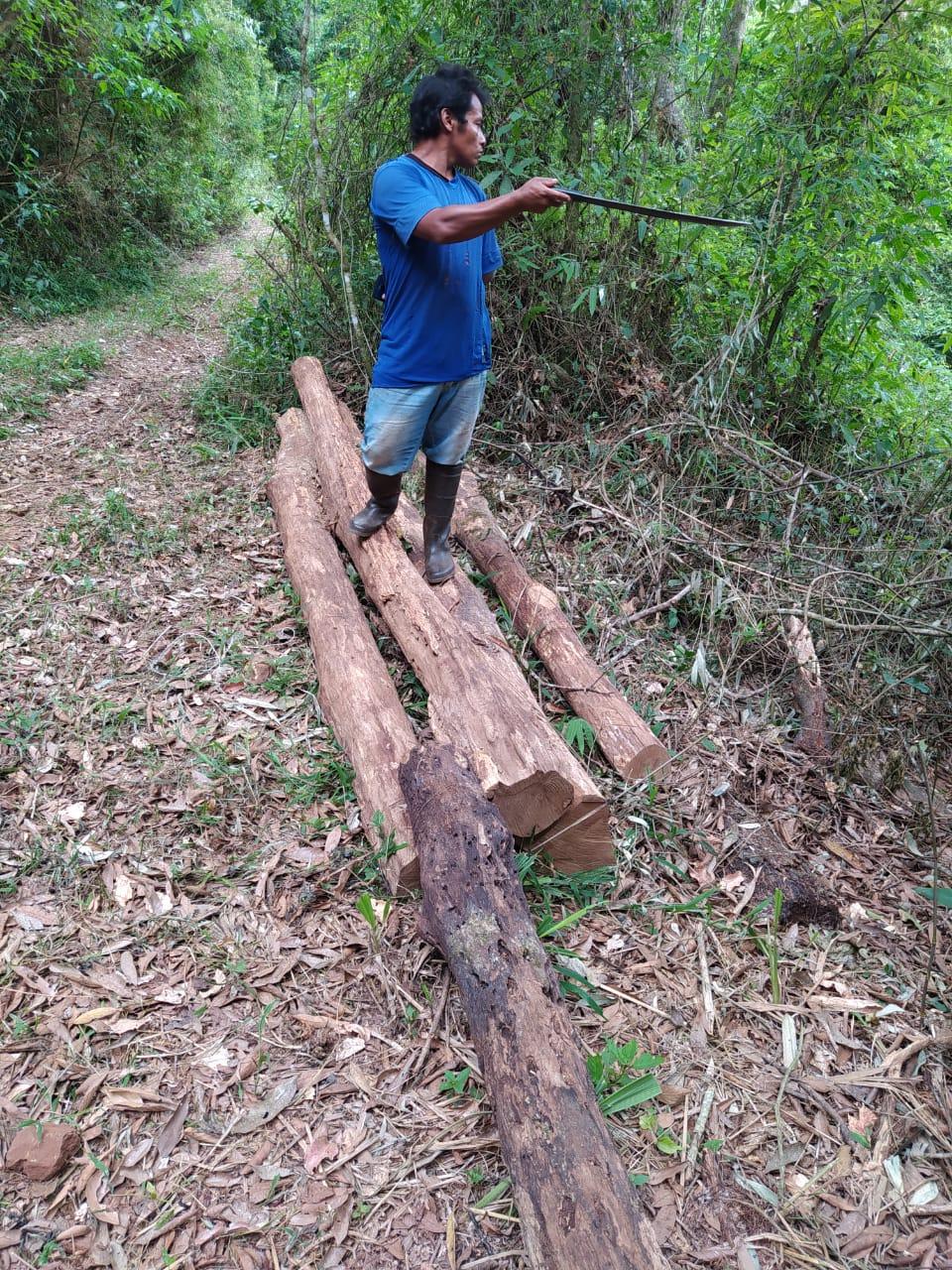 Caciques de la Comunidad Tekoa Arandú y Guardaparques frenan robo de madera nativa