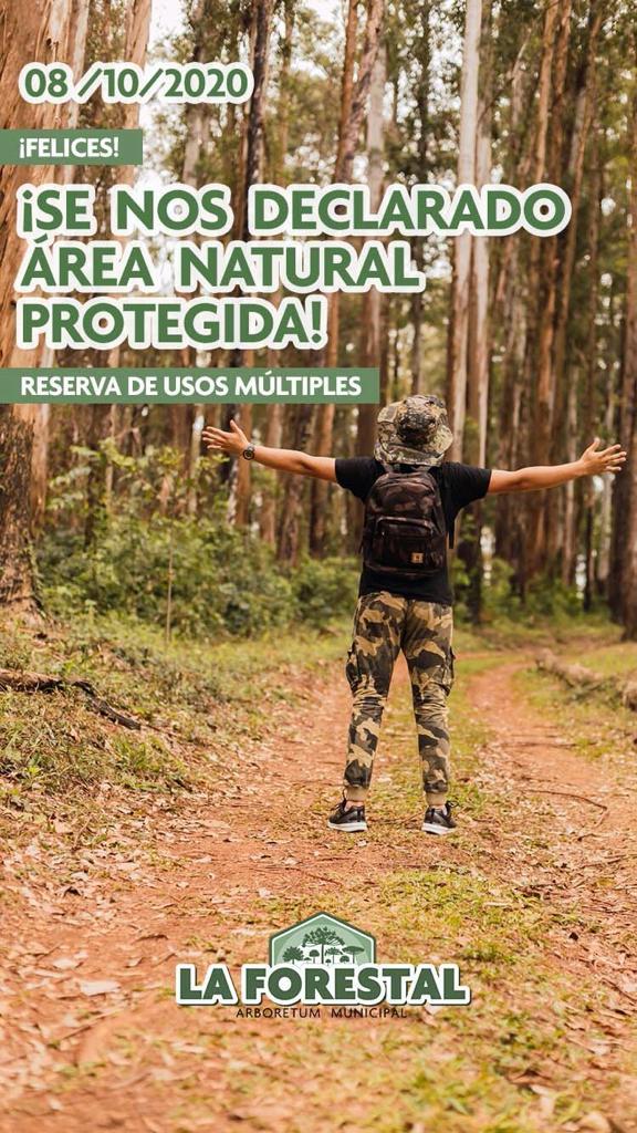 "La Forestal"" de Leandro N. Alem fue declarado Área Natural Protegida por la Legislatura Provincial"