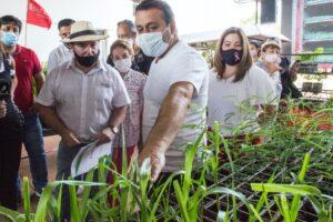 Recuperarán áreas quemadas en Santa Fe y Córdoba con plantines de la Biofábrica de Misiones
