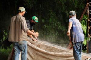 Productores fabricaran 55 mil kilos de abono orgánico