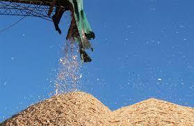 El sector industrial propone una mejora por precio de chip y raleo al Ministerio del Agro