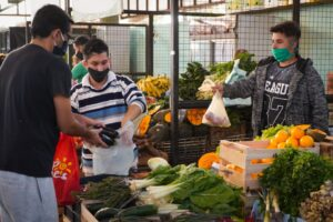Verduras que permitirán comidas saludables y frescas entre las ofertas del Mercado Concentrador Posadas