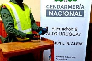 Gendarmes liberan un ejemplar de hurón y un ave exótica en su hábitat natural