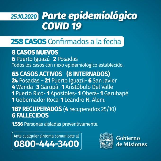 Misiones registró 8 casos nuevos el domingo: 2 en Posadas y 6 en Iguazú