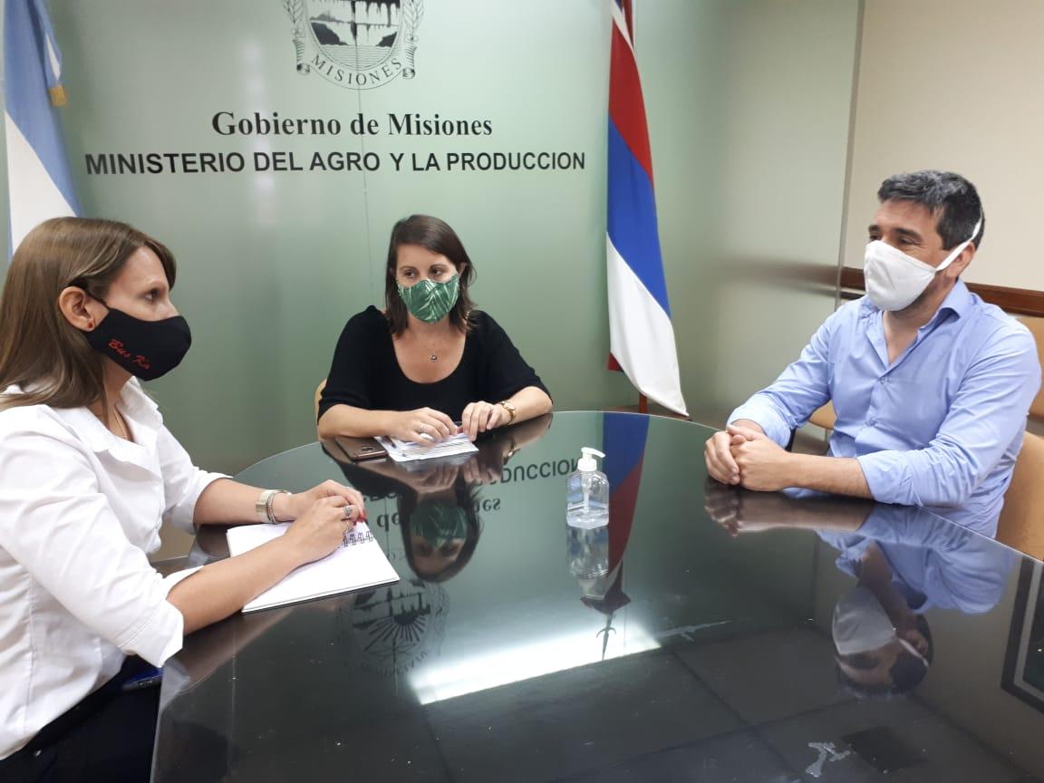 Ratifican vigencia de protocolo sanitario para el desarrollo de la zafra tealera