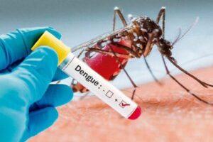 Proponen crear un Plan Integral de Prevención de las Enfermedades Transmitidas por Mosquitos