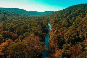 Con la selva como emblema, El Soberbio se prepara para dar el salto en el negocio turístico