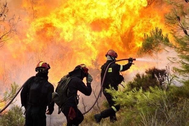 """AFOA organiza debate sobre """"prevención y presupresión de incendios forestales"""""""