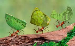 Gastos hormiga: cómo evitar que se vacíen los bolsillos