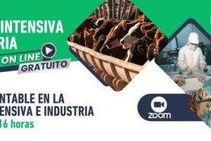 Gestión sustentable en ganadería intensiva e industria: nueva jornada virtual del IPCVA