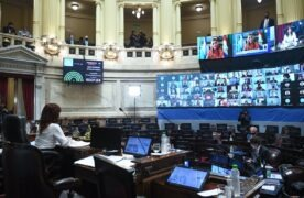 Sesión Especial remota del HonorableSenadode la Nación, en la que se debate el Presupuesto 2021,el 12 de Noviembre de 2020, en Buenos Aires, Argentina. (foto: GABRIEL CANO / ComunicaciónSenado)