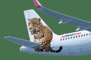 Venden paquetes promocionales a Misiones con las principales aerolíneas argentinas