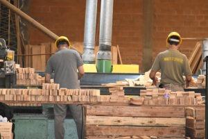 """""""Necesitamos exportaciones de madera con valor agregado"""""""