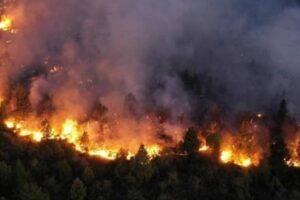 """""""Quién termina de apagar los incendios forestales"""""""