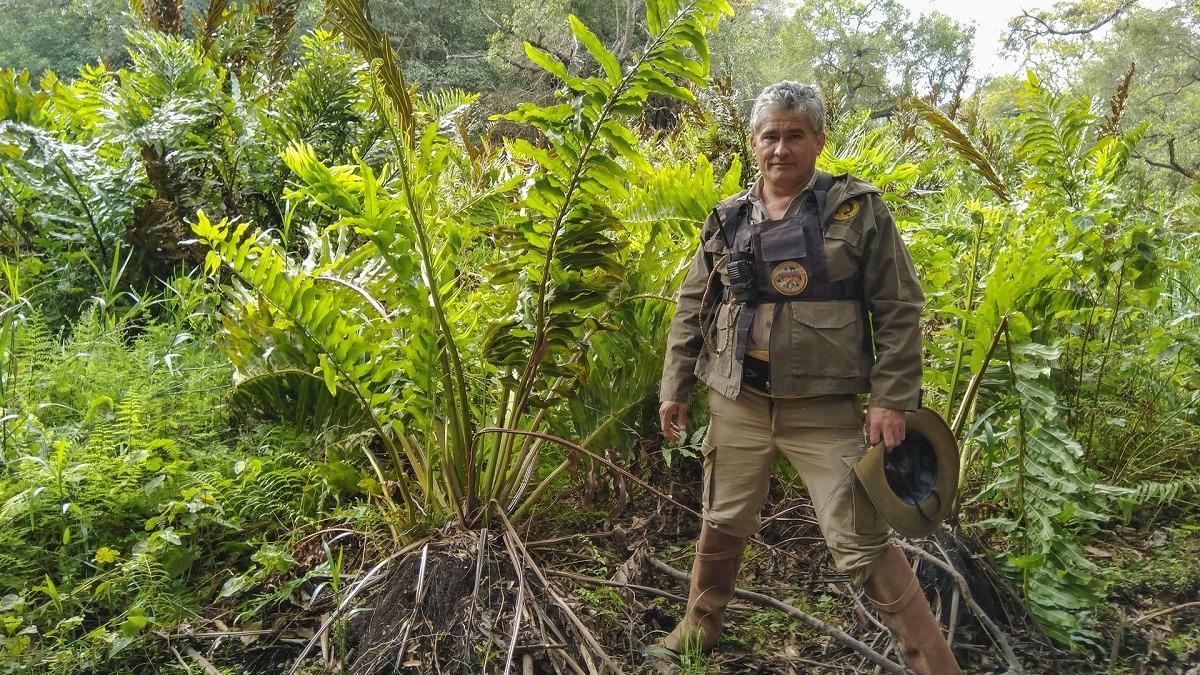 Nuevo registro vegetal para el Parque Nacional Río Pilcomayo y la provincia de Formosa