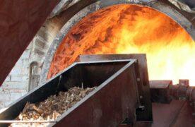 Informe muestra el crecimiento de la actividad industrial de la yerba mate y té, así como del consumo de cemento en Misiones